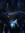 Blood Bone and Muscle