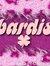 Bardis Abdullah