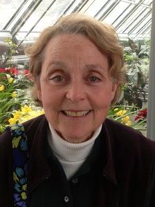 Pam Wolfe