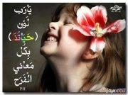 Mira Hany