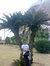 Mohamed basha