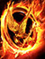 Hunger Games Bookclub (HGBC)