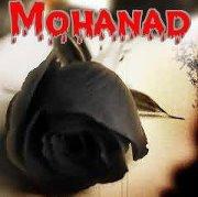 Mohanad El-metaal