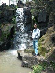 Dimas Adhi