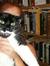 kerrycat