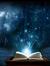 Bookwarrior