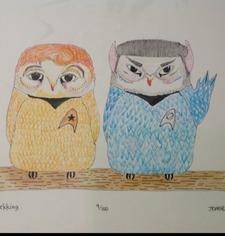 Owlboyle