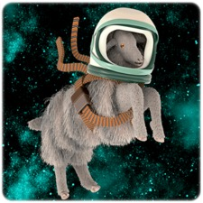 Derelict Space Sheep