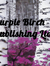 Purple Birch Publishing Ltd.