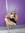 Eva (Eviux) | 1 comments
