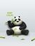 The Reading Panda