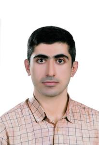 Mir Saman Tajbakhsh