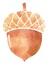 Acorn Queen