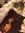battie (lavenderquartz) | 54 comments
