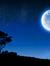 Celia R Moon
