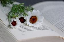 Booksarge