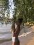 Taisya