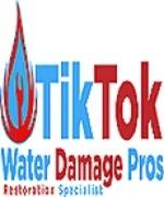 Tik Tok Water Damage Pros