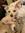 Dumpsterdogbooks  (dumpsterdogbooks) | 23 comments