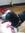 Derpy Panda Lover (derpypandalover) | 174 comments