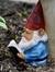 Plum de Gnome
