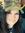 Rin McKenzie (rinnyrainwind)   4 comments
